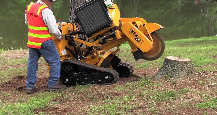stump grinding sussex